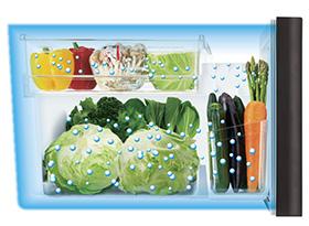 野菜室全体のうるおいキープ